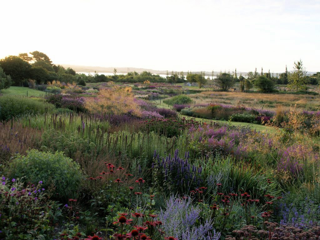 photo of garden designed by Piet Oudolf