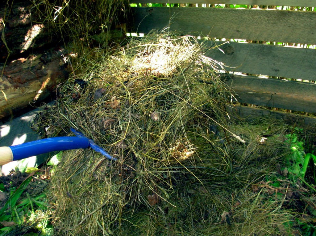 Step 5: Cover with hay