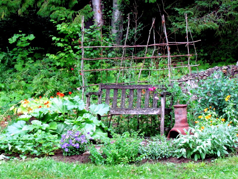 "August 18, 2008. Nasturtiums in the tub, rhubarb and strawberries growing like crazy, Campanula carpatica ""Blue Chips"" left of the step, which is hidden behind oregano. Bee balm (Monarda didyma ""Blue Stocking"") is thriving in the back behind calendula and sage."