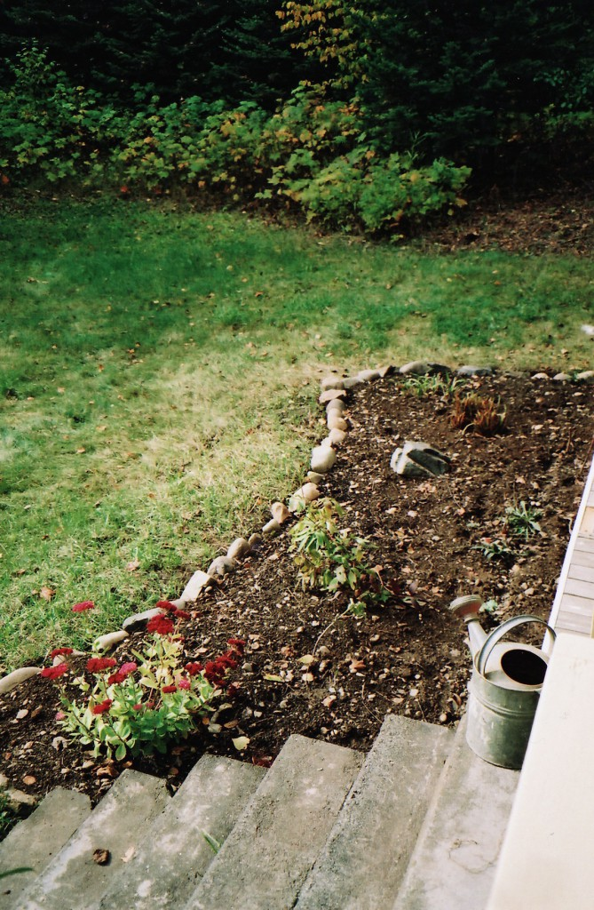 Front bed, 2004. Since then I have expanded it and removed the rock edging.