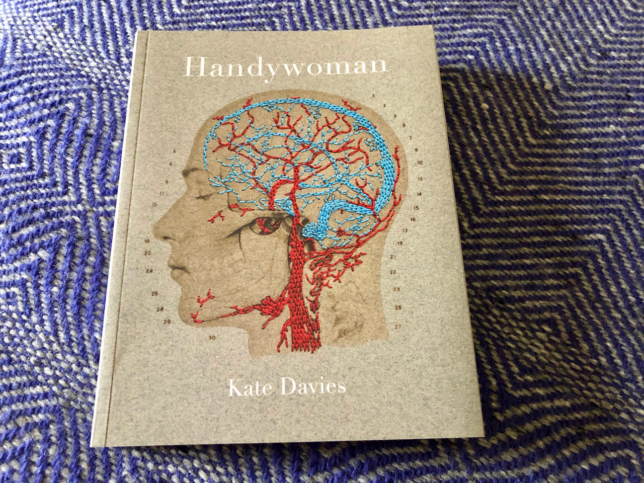 book cover: Kate Davies, Handywoman